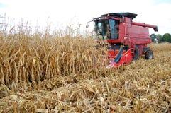 Raccolta della generalità del cereale Fotografie Stock