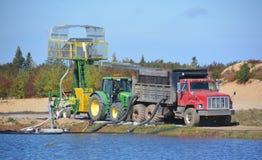 Raccolta della gestione delle acque dell'azienda agricola del mirtillo rosso fotografia stock