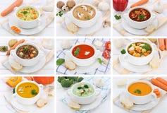 Raccolta della minestra delle minestre in tagliatella di verdure del pomodoro della ciotola con le sedere Fotografia Stock