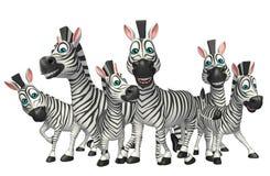 Raccolta della zebra Fotografia Stock