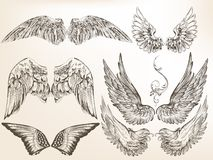 Raccolta delle ali disegnate a mano di vettore per progettazione Fotografia Stock Libera da Diritti