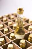 Raccolta delle bottiglie con brandy Fotografie Stock Libere da Diritti