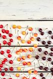 Raccolta delle ciliege e dello spazio maturi della copia Fotografia Stock