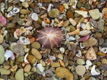 Raccolta delle coperture sulla spiaggia Fotografia Stock