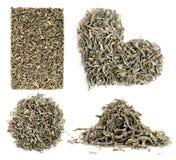 Raccolta delle foglie di tè verdi Immagini Stock