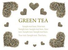 Raccolta delle foglie di tè verdi Fotografia Stock