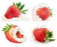 Raccolta delle fragole con panna montata sul backg bianco Fotografia Stock