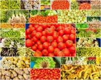 Raccolta delle immagini dagli agricoltori di verdure Immagini Stock