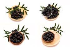 Raccolta delle immagini delle olive nere nelle combinazioni differenti Fotografia Stock Libera da Diritti