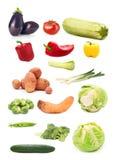 Raccolta delle immagini di verdure stagionali isolata su backgr bianco Fotografia Stock Libera da Diritti
