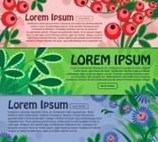 Raccolta delle insegne orizzontali con gli elementi floreali e del posto per il vostro testo Vettore Fotografia Stock Libera da Diritti