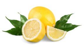 Raccolta delle limette e dei limoni freschi - collage Immagini Stock Libere da Diritti