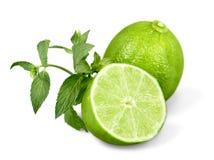 Raccolta delle limette e dei limoni freschi - collage Fotografia Stock Libera da Diritti