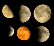 Raccolta delle lune reali Immagini Stock