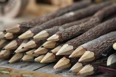 Raccolta delle matite di legno fatte di vari rami Fotografia Stock