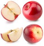 Raccolta delle mele rosse isolate sui precedenti bianchi Immagine Stock