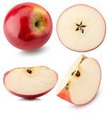 Raccolta delle mele rosse isolate sui precedenti bianchi Fotografia Stock