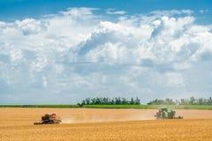 Raccolta delle mietitrici del grano nel campo e nel blu del fondo Immagine Stock Libera da Diritti