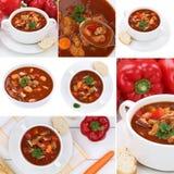 Raccolta delle minestre della minestra di goulash con carne e paprica in ciotola Immagine Stock Libera da Diritti