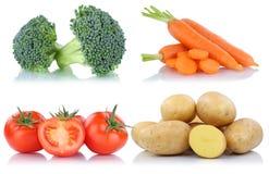 Raccolta delle patate delle carote dei pomodori delle verdure isolata Fotografia Stock