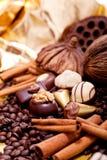 Raccolta delle praline differenti del cioccolato zuccherato Fotografie Stock Libere da Diritti