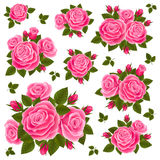 Raccolta delle rose Immagini Stock