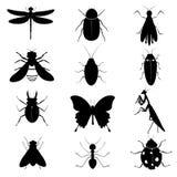 Raccolta delle siluette degli insetti Immagine Stock