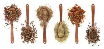 Raccolta delle spezie in cucchiai Immagine Stock