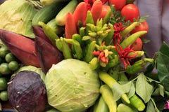 Raccolta delle verdure Immagini Stock Libere da Diritti