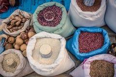 Raccolta di agricolo Fotografie Stock