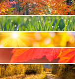 Raccolta di Autumn Headers - fondo dell'estratto di stagione di caduta Fotografie Stock