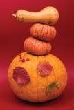 Raccolta di autunno fotografie stock
