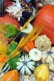 Raccolta di autunno immagini stock libere da diritti