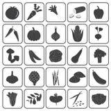 Raccolta di base di vettore delle icone delle verdure Fotografie Stock