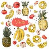 Raccolta di colore dei frutti differenti Interi ed oggetti affettati isolati su fondo bianco Abbozzo disegnato a mano illustrazione di stock