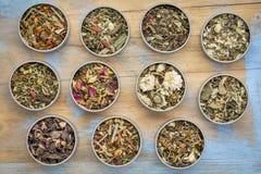 Raccolta di erbe del tè di miscela Immagini Stock Libere da Diritti