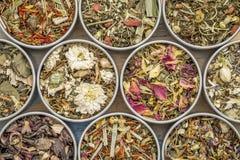Raccolta di erbe del tè di miscela Fotografia Stock Libera da Diritti