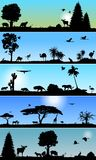 Raccolta di fauna e delle insegne della flora Immagine Stock