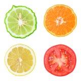 Raccolta di frutta e della verdura fresche Fotografia Stock Libera da Diritti