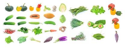 Raccolta di frutta e delle verdure Fotografia Stock