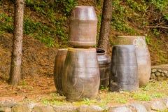 Raccolta di grandi vasi di terra Immagini Stock Libere da Diritti