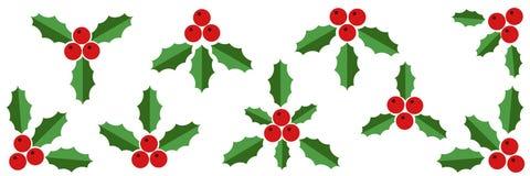 Raccolta di Holly Berries e delle foglie verdi rosse Immagini Stock