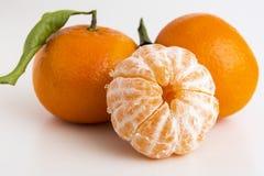 Raccolta di interi agrumi della clementina o del mandarino Fotografia Stock