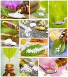 Raccolta di medicina alternativa e dell'omeopatia Fotografia Stock Libera da Diritti