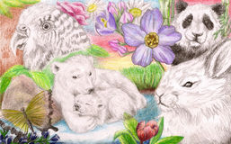 Raccolta di molti animali Fotografia Stock