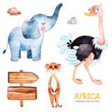 Raccolta di safari con lo struzzo, elefante, meercat, segno di legno, pietre royalty illustrazione gratis