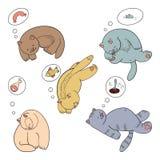 Raccolta di sogni e dei gatti Fotografia Stock