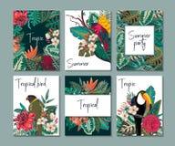 Raccolta di vettore con sei carte, note ed insegne con il tucano, fiori esotici, piante e foglie illustrazione vettoriale
