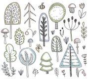 Raccolta di vettore degli alberi forestali selvaggi disegnati a mano, piante, fiori, funghi illustrazione vettoriale