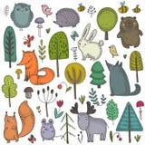 Raccolta di vettore degli animali selvaggi disegnati a mano della foresta illustrazione vettoriale